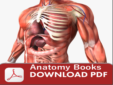 401 Anatomy books download free