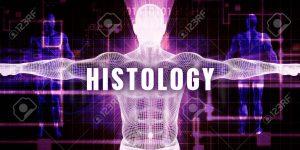 Medical histology books
